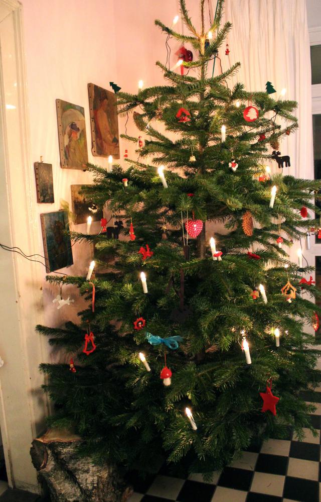 Weihnachtsdeko Und Katzen Katzen Forum